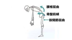 中腰姿勢は腰痛の原因?