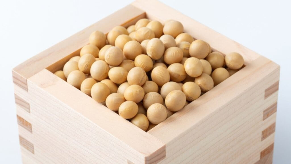 【レジスタントプロテイン】高野豆腐でダイエット!-3