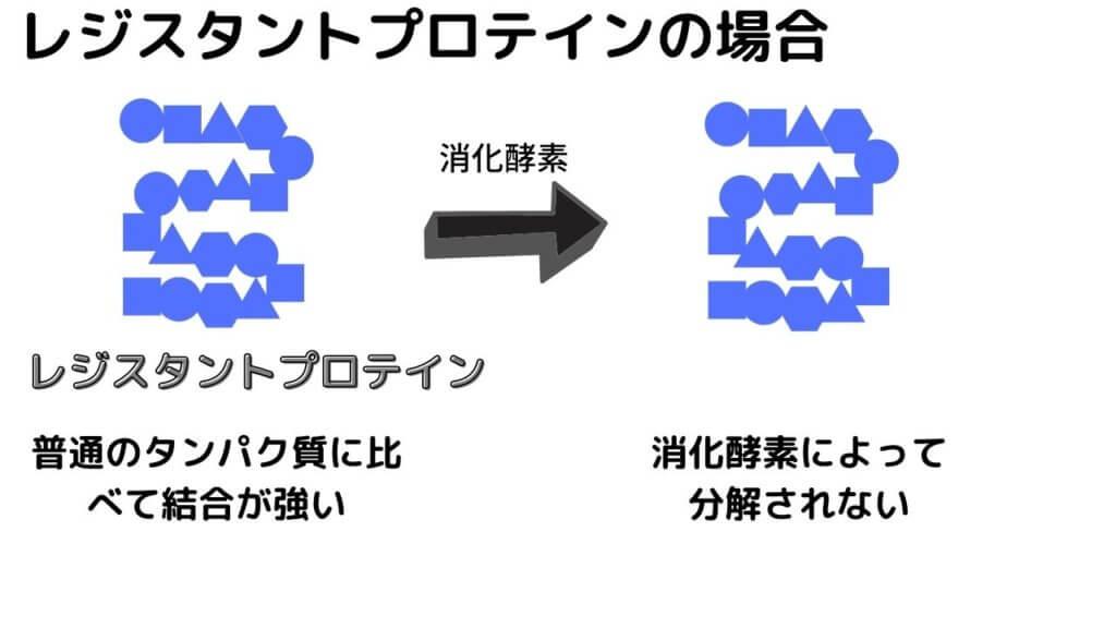 【レジスタントプロテイン】高野豆腐でダイエット!-4