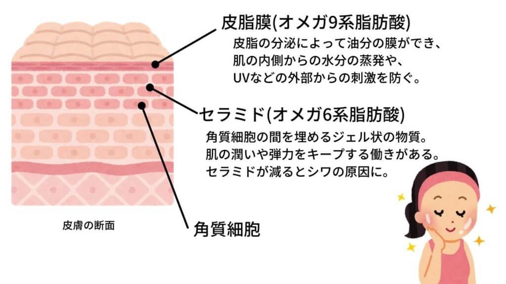 【サラダ油】は健康にいい油?-6