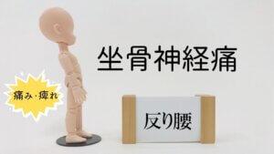 反り腰と坐骨神経痛