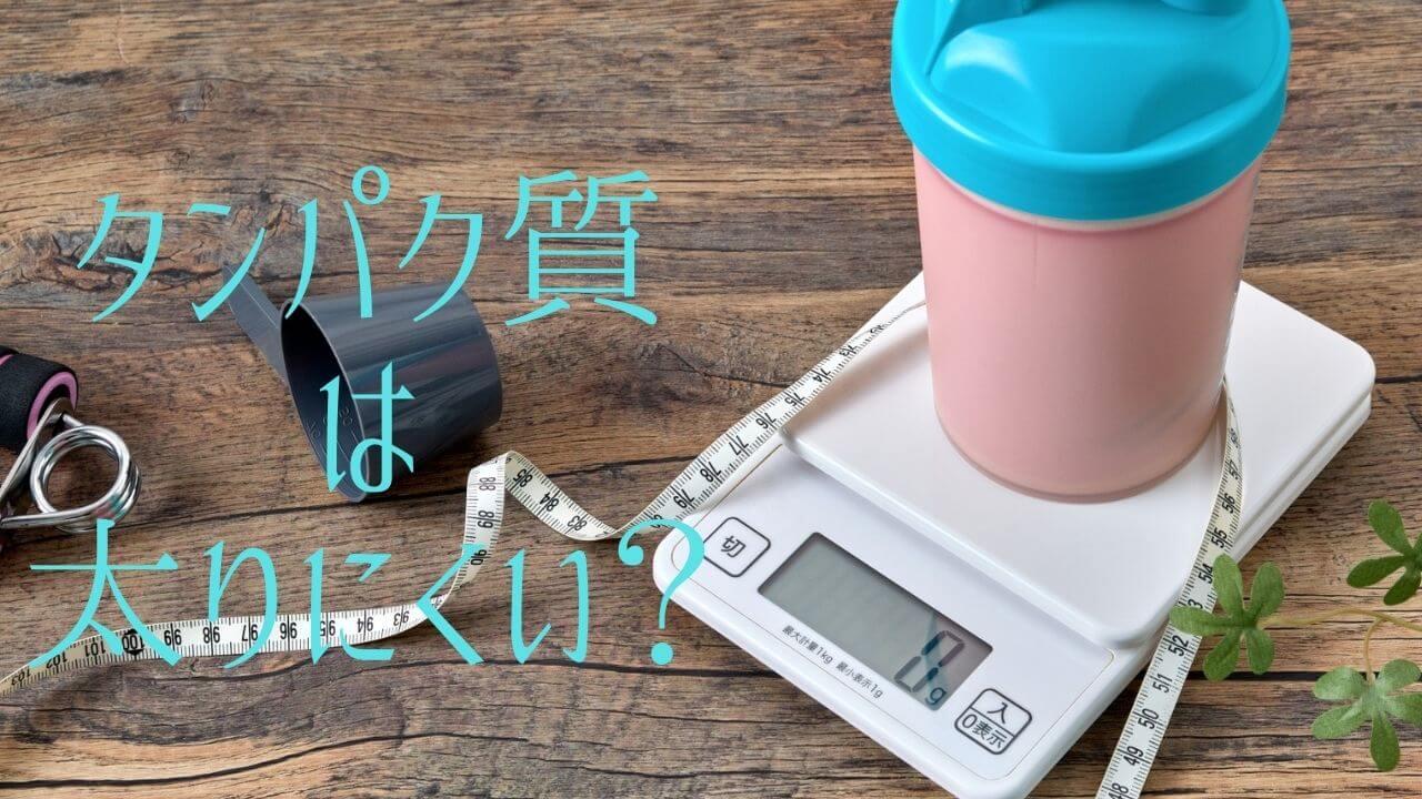 タンパク質は太りにくい?